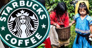 แรงงานเด็ก : ต้นทุนที่แท้จริงของกาแฟเช้าของเรา