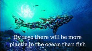 เราจะมีพลาสติคมากกว่าปลาภายในมหาสมุทรของโลก