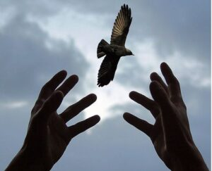 เสรีภาพและอิสรภาพคือวิญญาณแห่งความเป็นมนุษย์
